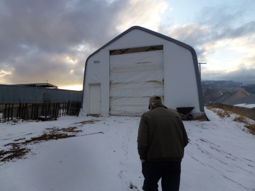 An enclosed calf barn in Coalville, UT. The sides of the barn can be raised in warmer weather.