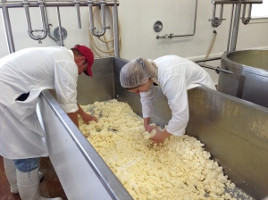 Mixing the cheese