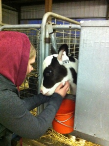 Megan and Baby Cow