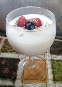 Yogurt6