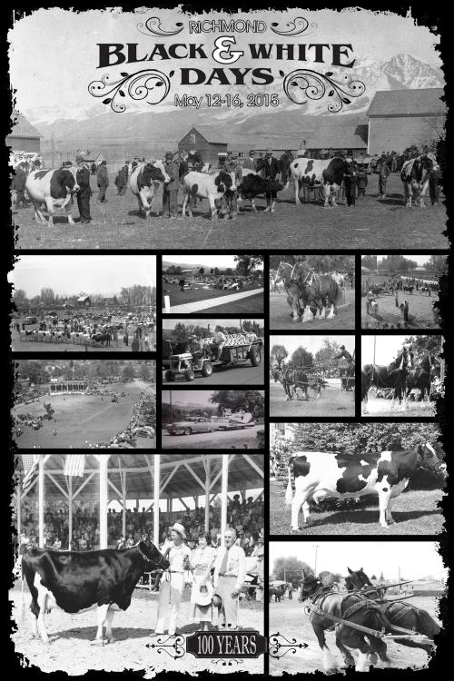Richmond Cow Show 100 years